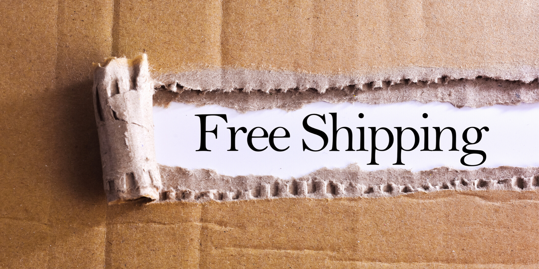 free-shipping-march-offer-page-banner.png