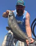 nc blue cat fish