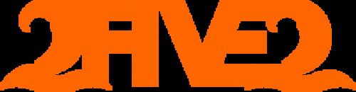 Neon Orange 252