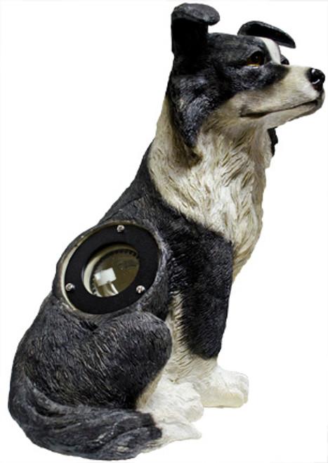 LV-LED-DOG-BW