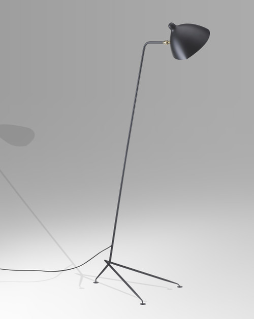 LIGHTING JUNGLE BEL22BLK 1-Light Floor Lamps,Black