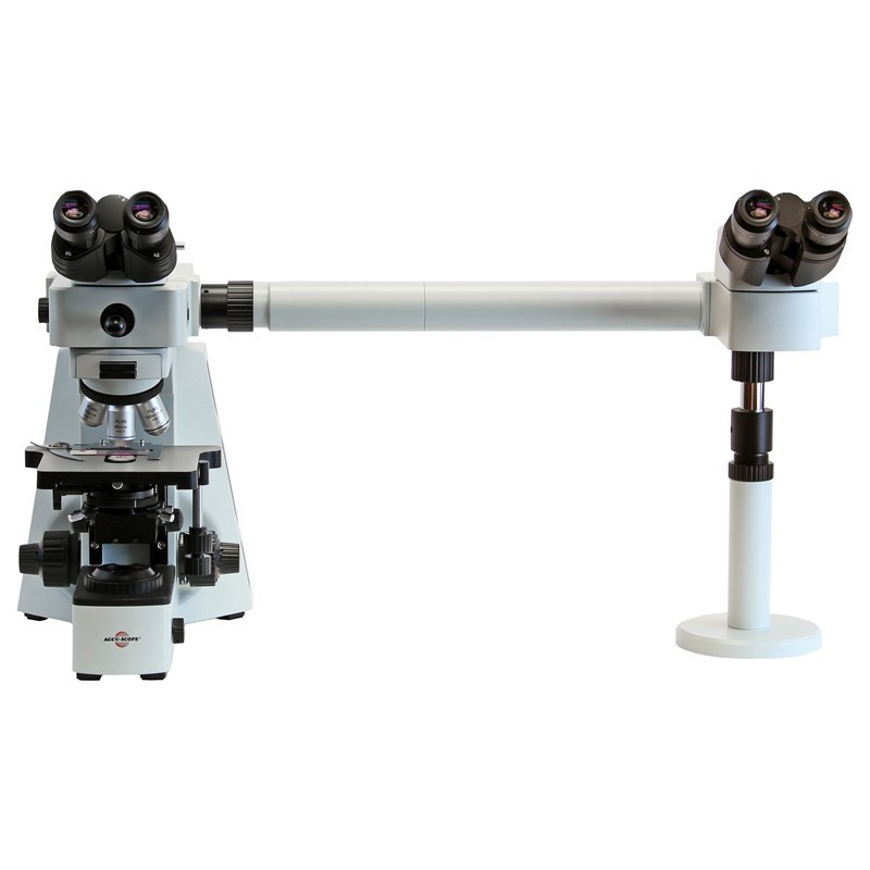ACCU-SCOPE EXC-400 Trinocular Pathology/Mohs Dual View Microscope, Side by Side