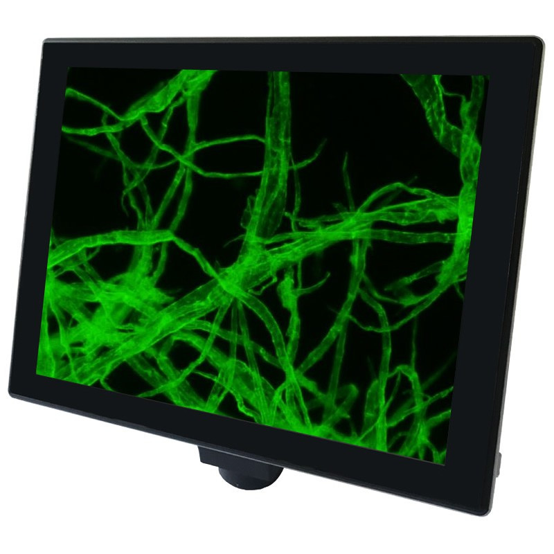 """Labomed 3146300 iVu Touch Camera 10"""" Touch Screen 5 Megapixels"""