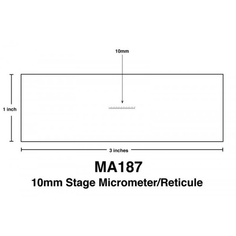 Meiji MA187 10mm Stage Micrometer