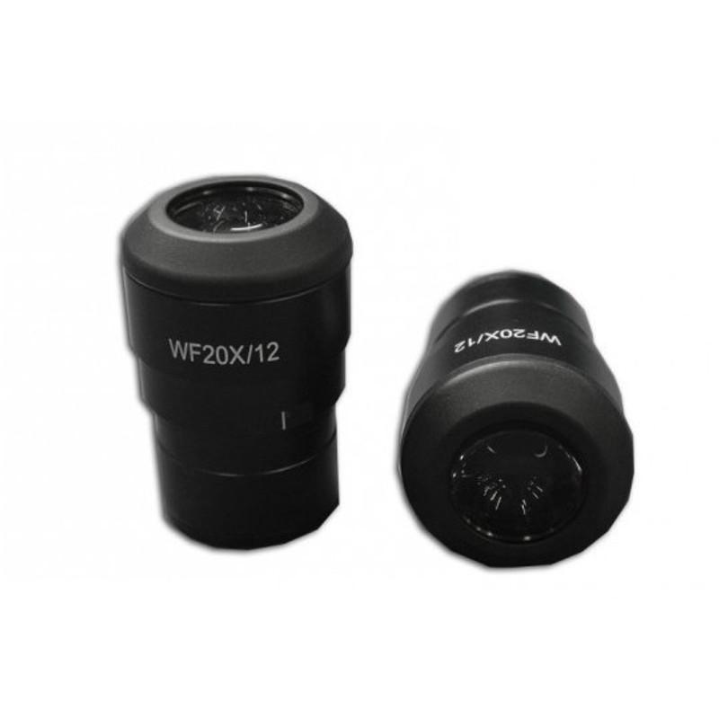 Meiji CZ-3020 EWF 20x/12mm Eyepiece, Single