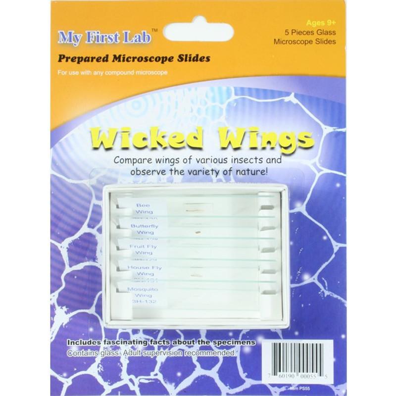 Prepared Slide Mini Set, Wicked Wings