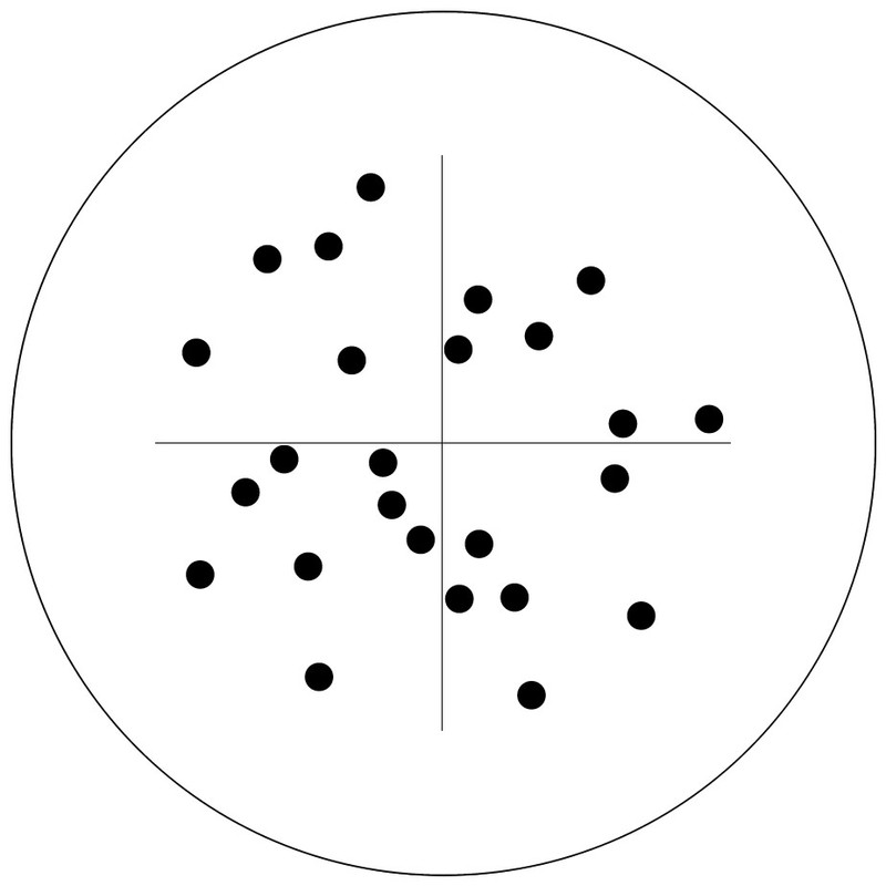 Counting Reticle, Chalkley Point Array 25 Dots