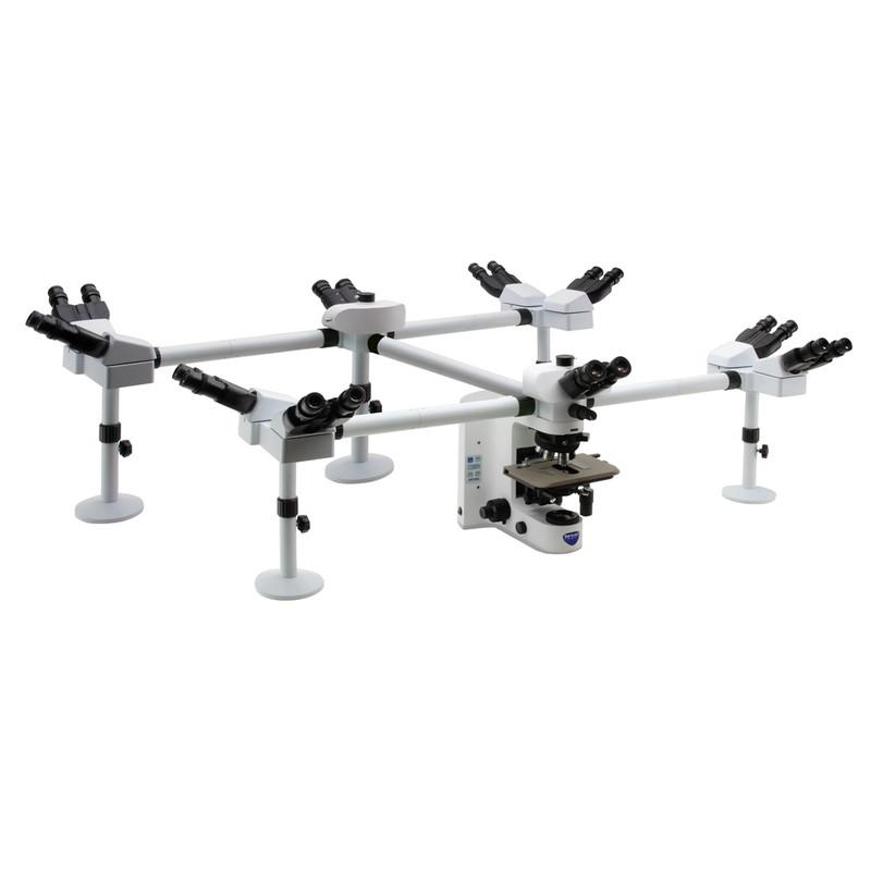 OPTIKA B-1000Ti-10 Ten Head Research Microscope