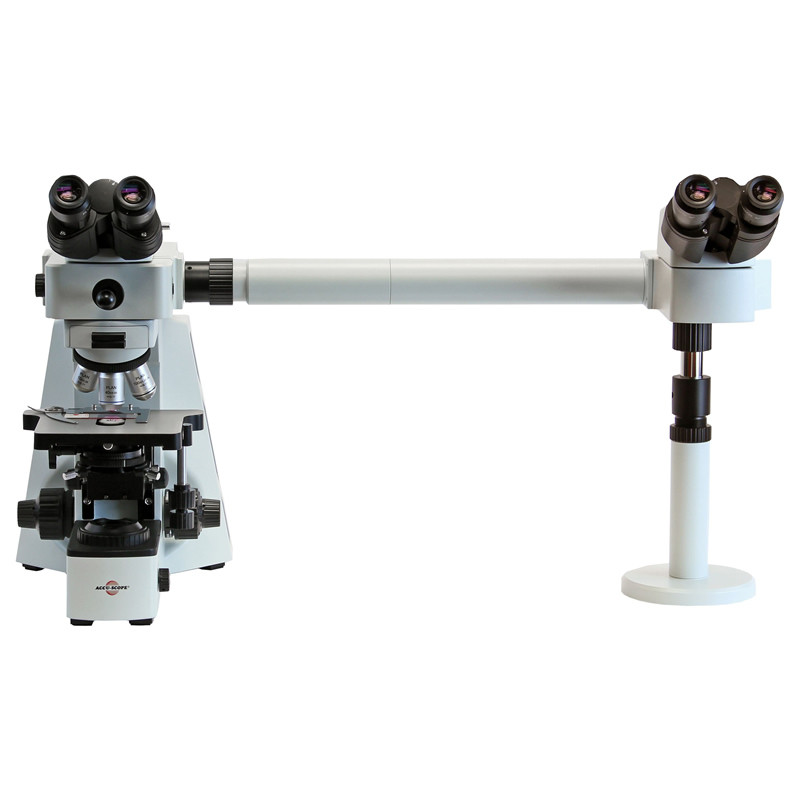 ACCU-SCOPE EXC-400 Dual View Microscope, Side by Side