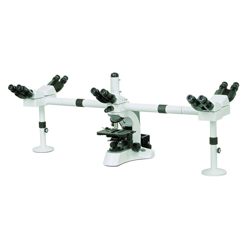 ACCU-SCOPE 3025 Five Head Teaching Microscope with Ceramic Mechanical Stage