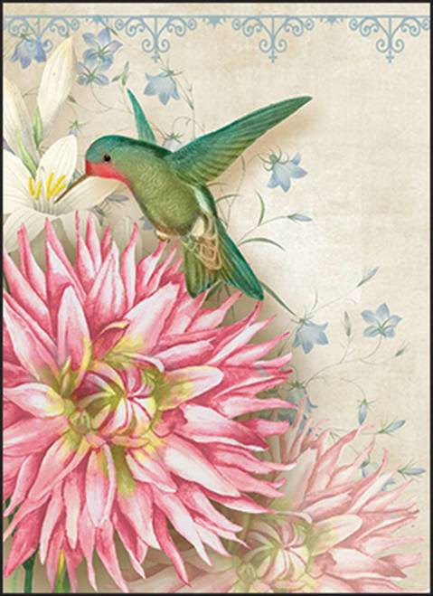 Card Pack - Hummingbird