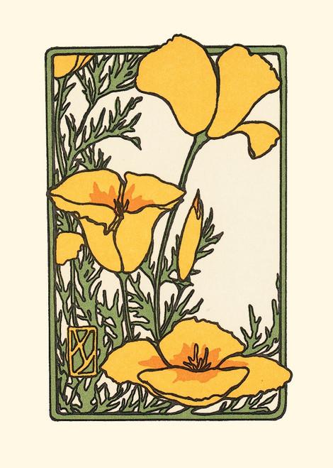 Card - California Poppy