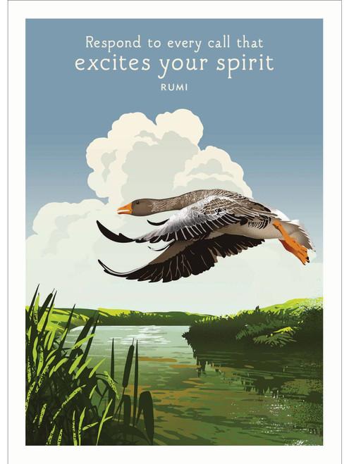 Birthday Card - Flying Duck