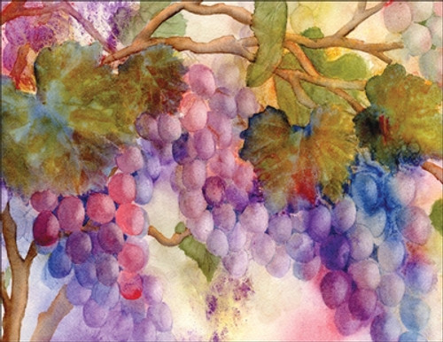 Boxed Note Cards - Grapes