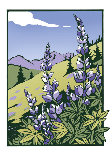Lupines Blank Card