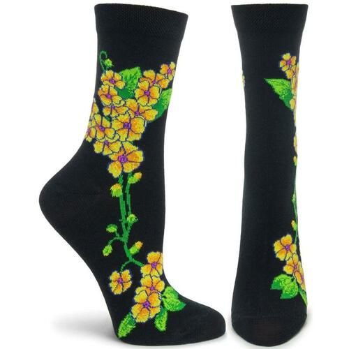 Apothecary Florals - Primrose