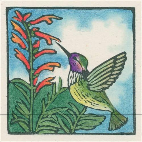 Hummingbird Matchbook Notes