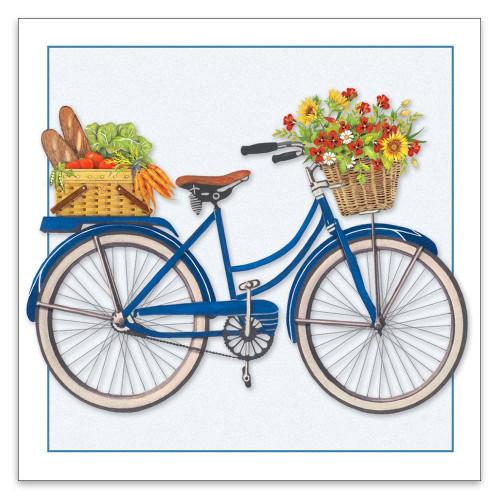 Blue Bicycle 3x3 Enclosure Card