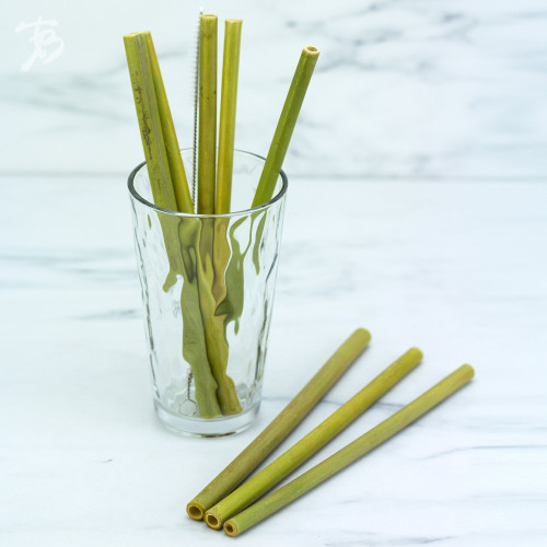8-pack Reusable Bamboo Drinking Straws with Cleaning Brush