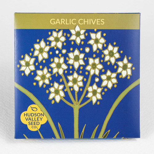 Garlic Chive Herb