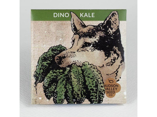 Dino Kale Seeds