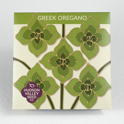 Greek Oregano Herb