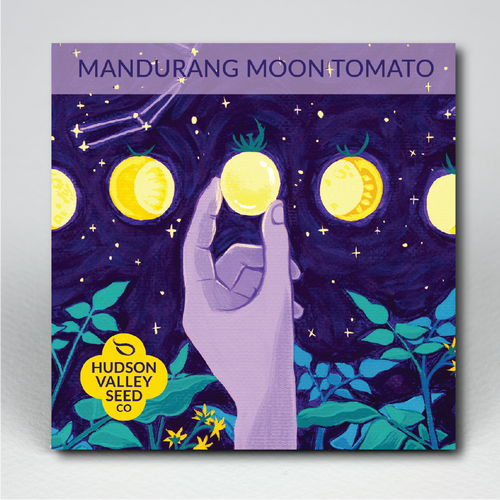 Mandurang Moon Tomato