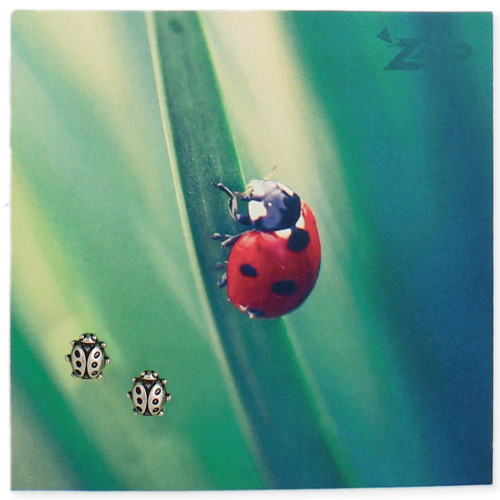 Silver Ladybug Post Earring