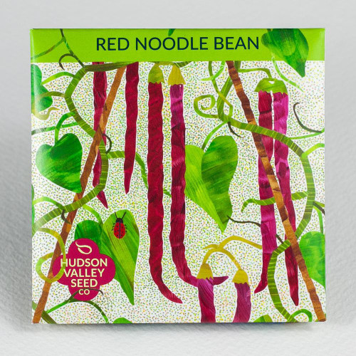 Red Noodle Bean