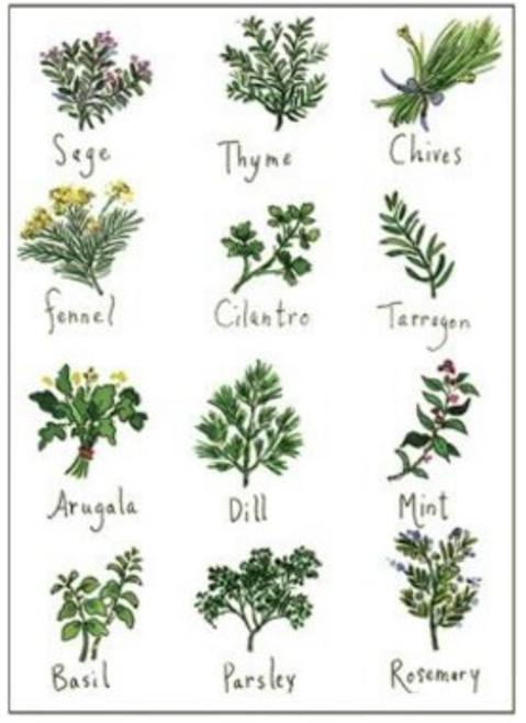 Herbs towel