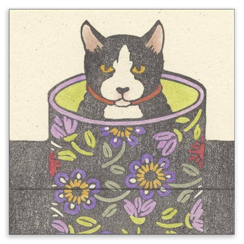 Cat in Round Box Matchbook Note