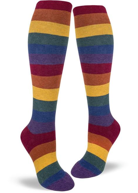 Heather Rainbow Striped Knee Socks
