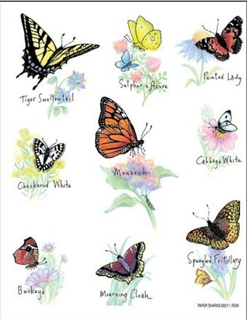 North American Butterflies Towel