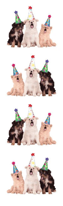 Party Dog Stickers
