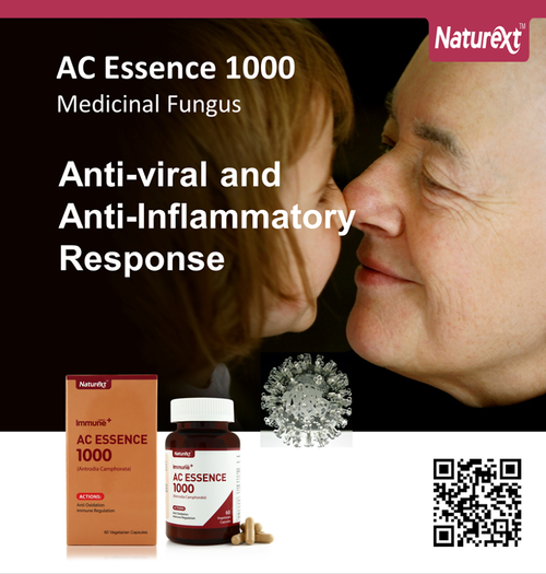 AC Essence 1000
