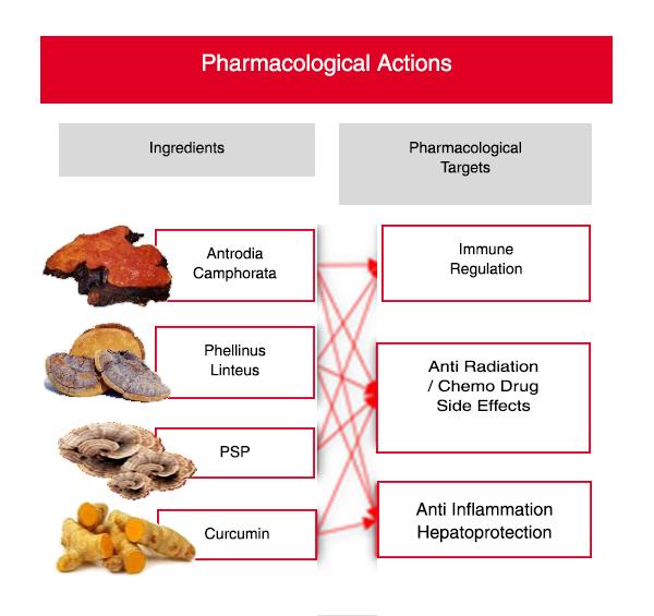 pharmaactions.jpg