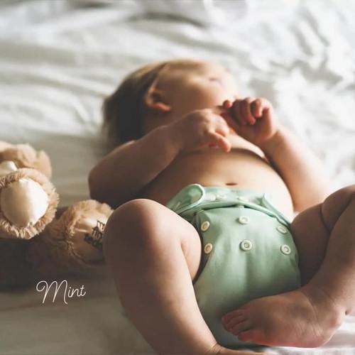 Baby Bare Bare Cub AI2 Solid/Carnival Colours