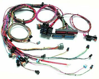 #26033 - GM Style LS 1 Engine Harness