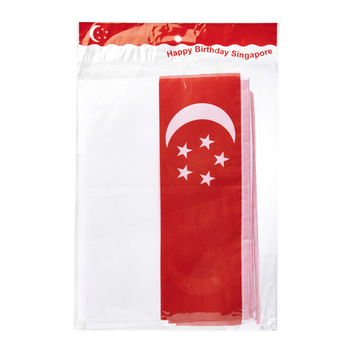 Rectangular Singapore Pennant Flag Banner