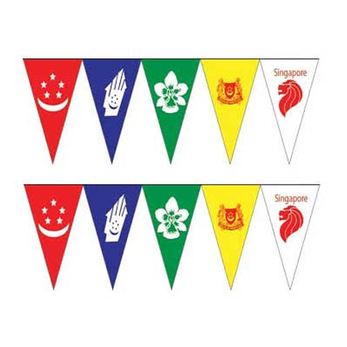 Multicolor Singapore Pennant Flag Banner