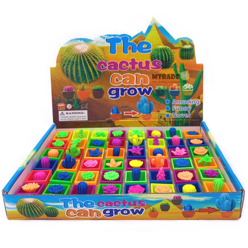 Growing Cactus and Plant Toys 48pcs/box