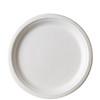 Sugarcane Plate - Round 9 inch