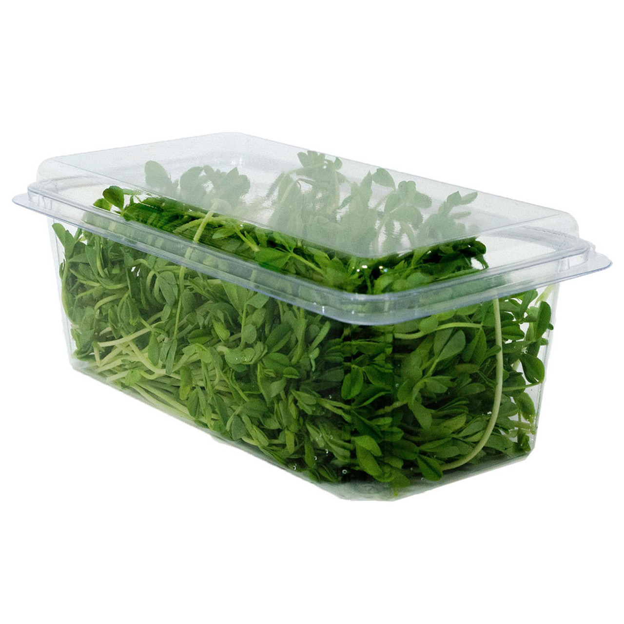 32oz Hinged Compostable Container