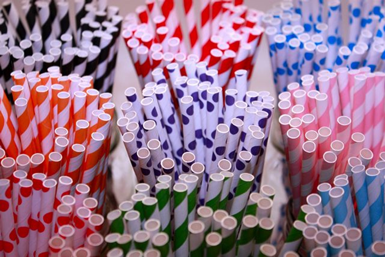 Paper Straws - European Blue Stripes