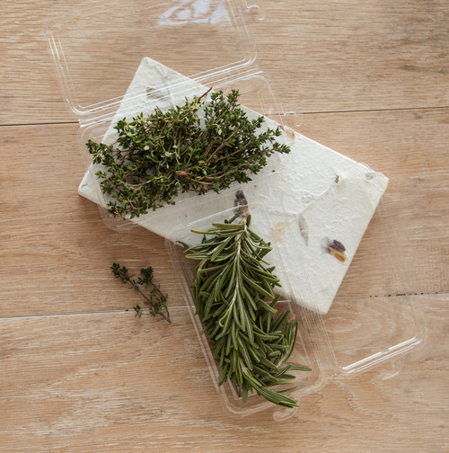 Fresh Herb Container - Medium