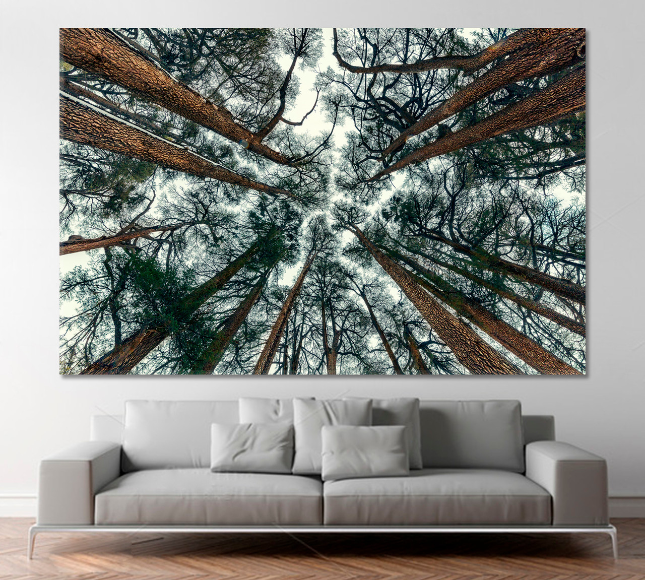Frorest Trees Wall Art