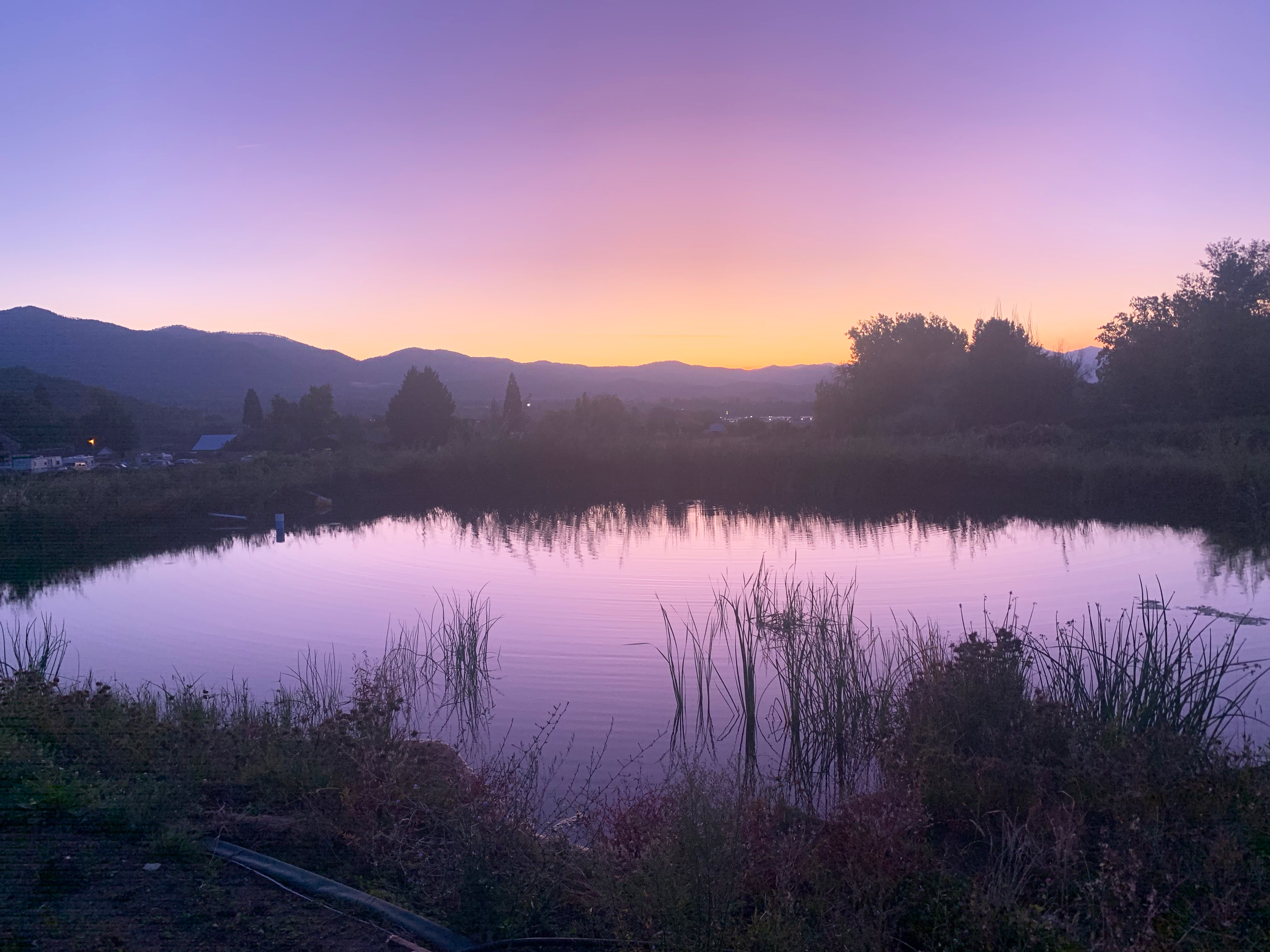 purple-sunset-over-pond.png