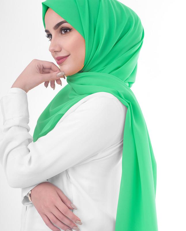 Kashmir Poly Georgette Scarf