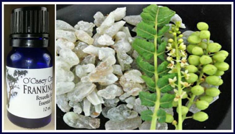 100% Pure Oman Boswellia Sacra Frankincense Essential Oil