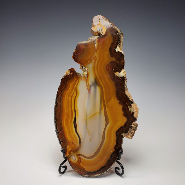 Agate Slice- Natural Amber Colored